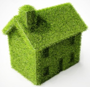 Sustainable Living Section